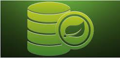 spring data logo